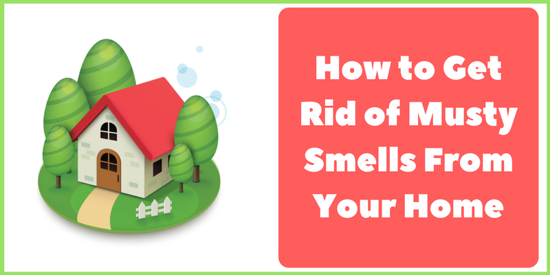 How To Get Rid Of Musty Smell From Your Home