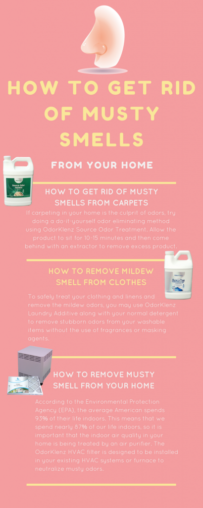 How To Remove Musty Smell From Carpets Home Fatare
