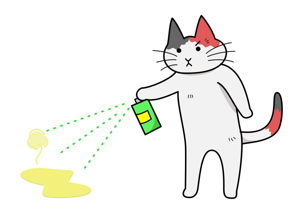 how to get rid of cat smell