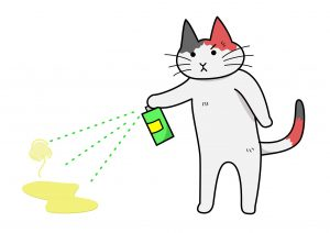 remove cat odors from your homejpg