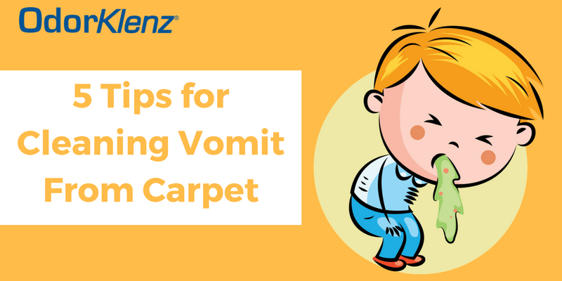 5 Tips for Cleaning Vomit From Carpet