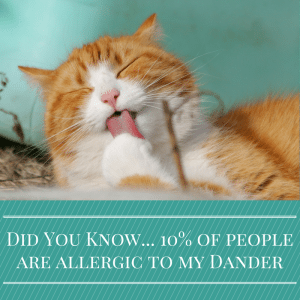 Did You Know... 10% of people are allergic to me