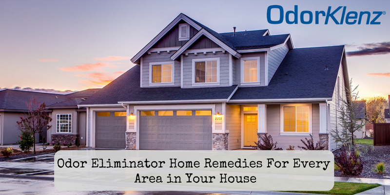 Odor Eliminator Home Remedies For Every Area in Your Home