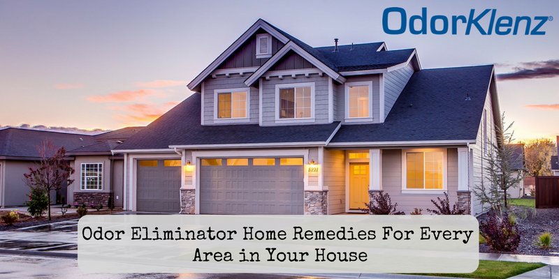Odor Eliminator Home Remedies For Every Area in Your House