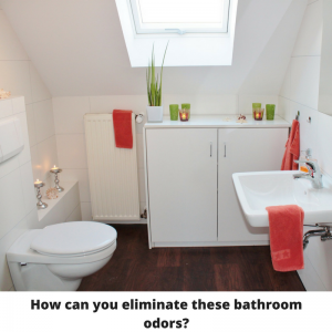 My House Stinks And I Dont Know Why - How to eliminate bathroom odor