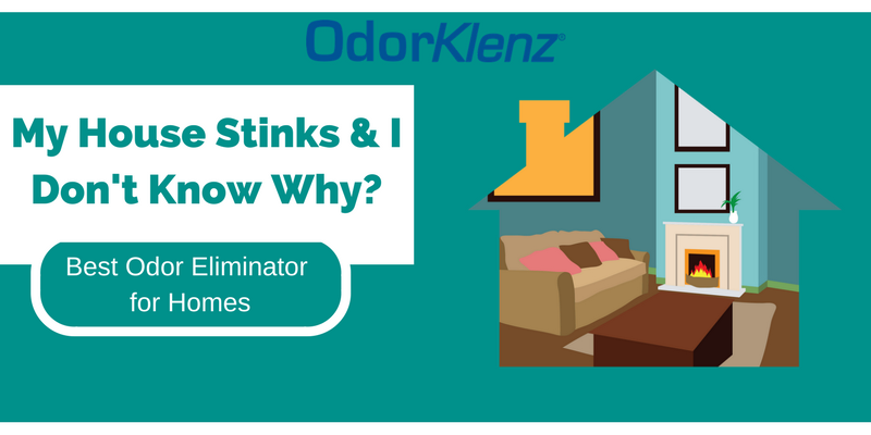 My House Stinks & I Don't Know Why- Best Odor Eliminator for Homes