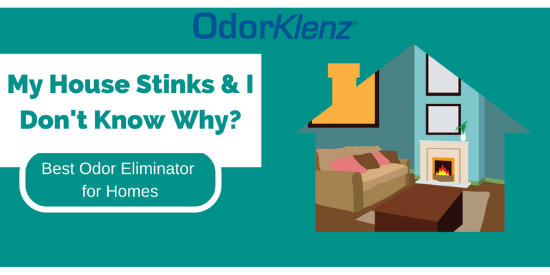 My House Stinks and I Don't Know Why? – Find Out the Best Odor Eliminator for Homes