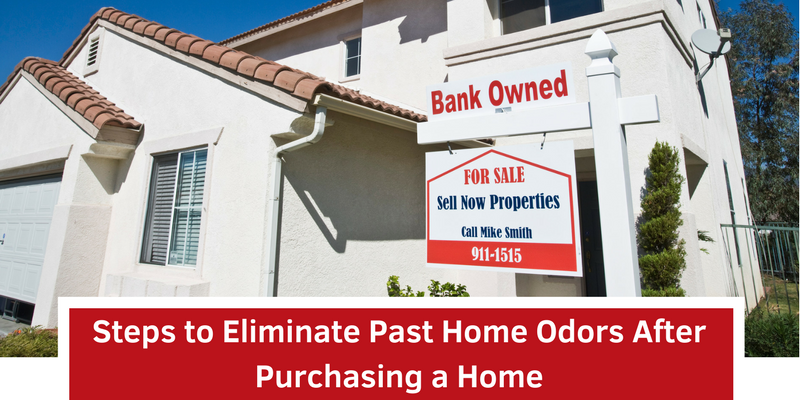 Steps to Eliminate Past Home Odors After Purchasing a Home