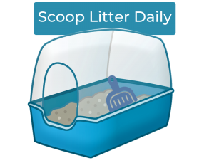 How to clean litter box