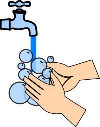 Hand Sanitizer or Hand Wash to Remove Hand Odors