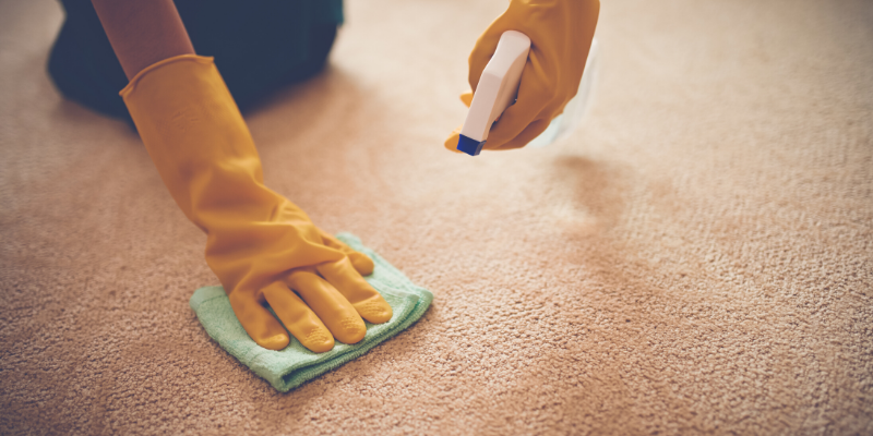How to Get Throw Up Smell Out of Carpet